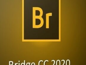 Adobe-Bridge-2020