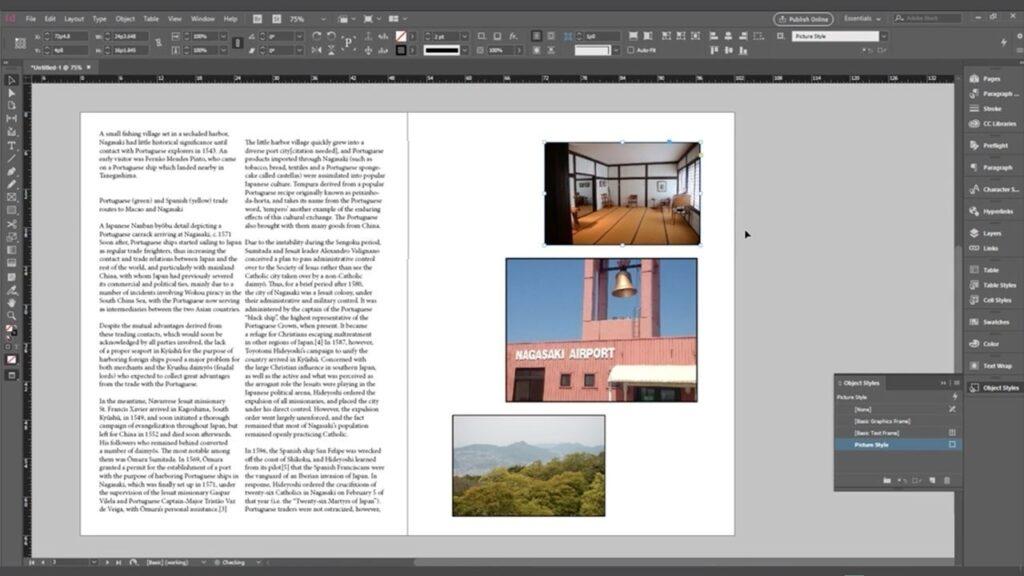 Adobe InDesign CC2020