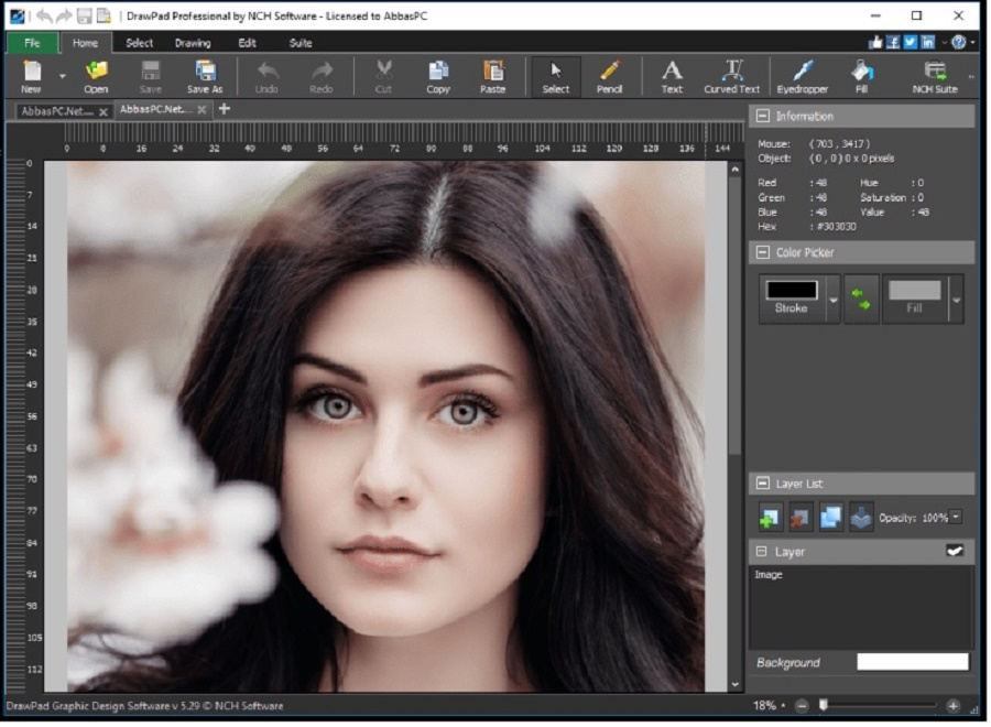 Download NCH DrawPad Pro 6.58 Free Latest Full Version Direct